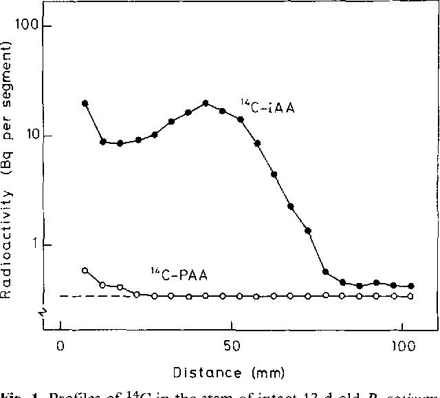 Figure 1 from Regulation of auxin transport in pea (Pisum sativum L
