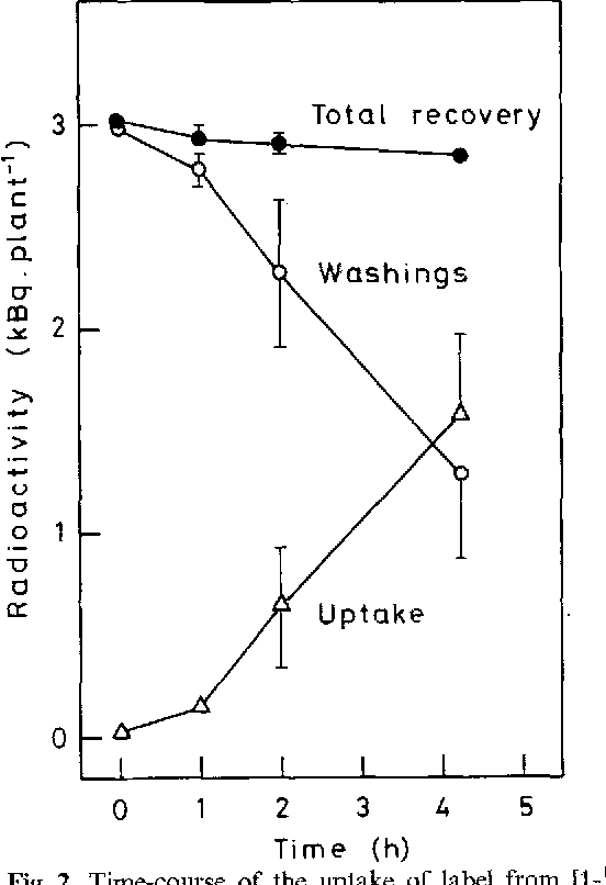 Figure 2 from Regulation of auxin transport in pea (Pisum sativum L