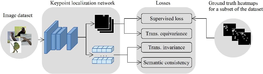 Figure 1 for Semi-supervised Keypoint Localization