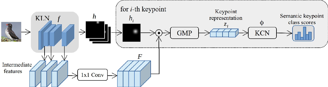 Figure 3 for Semi-supervised Keypoint Localization