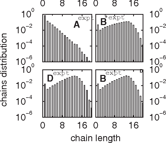 FIG. 14. Distribution function of chains of water molecules at state point Aexpt showing monotonic decrease with increasing chain length and a second maximum in liquidlike states.