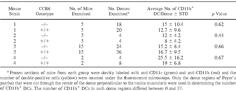 Table I from Dendritic Cells + Peyer ' s Patch CD 11 b