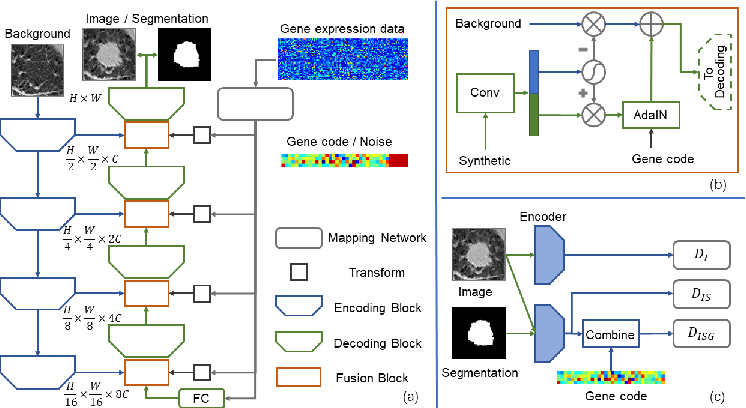 Figure 1 for Correlation via synthesis: end-to-end nodule image generation and radiogenomic map learning based on generative adversarial network