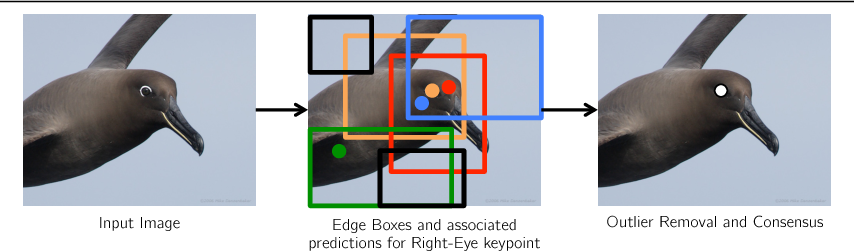Figure 1 for Part Localization using Multi-Proposal Consensus for Fine-Grained Categorization