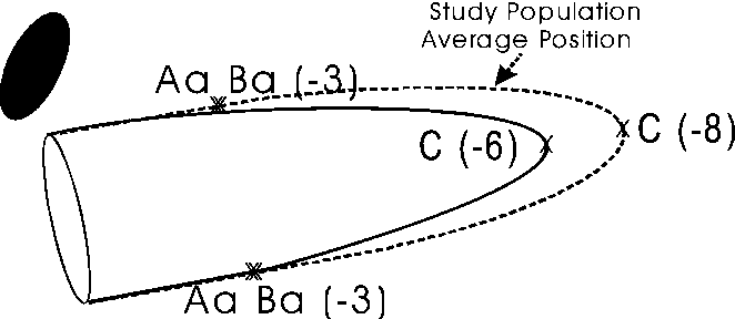 Fig. 1 If one study population's average TVL was 8 cm and a woman with no descent had a TVL of 6 cm, she would mathematically have a 2-cm prolapse