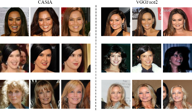 Figure 1 for DAIL: Dataset-Aware and Invariant Learning for Face Recognition