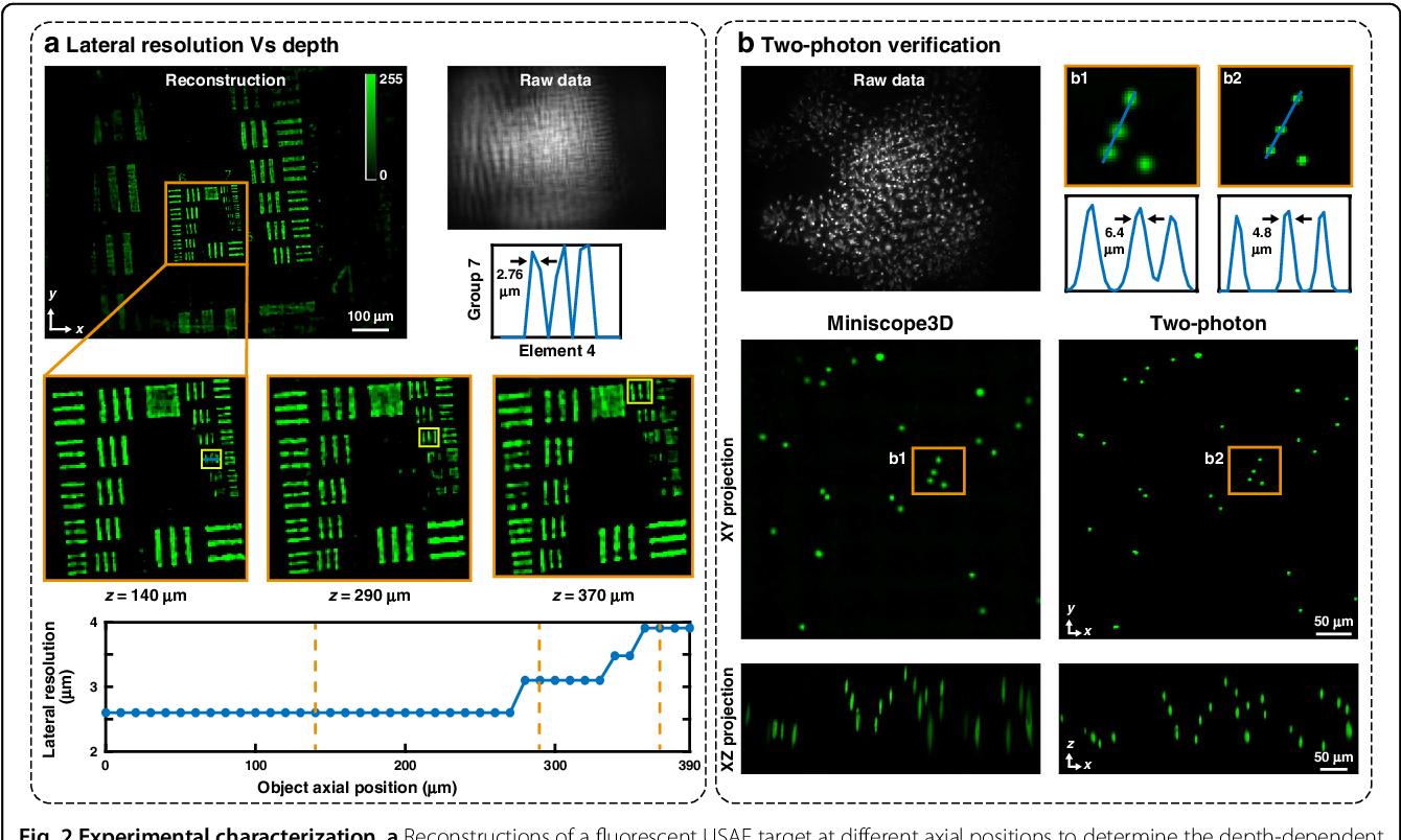 Figure 2 for Miniscope3D: optimized single-shot miniature 3D fluorescence microscopy