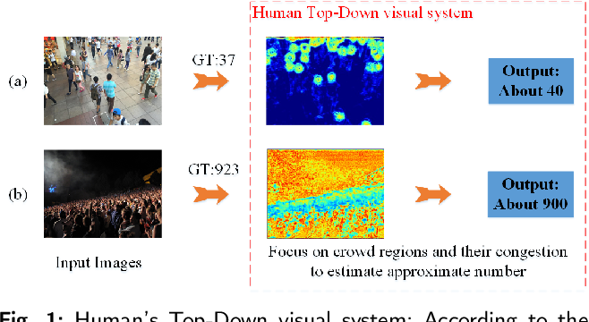 Figure 1 for Region-Aware Network: Model Human's Top-Down Visual Perception Mechanism for Crowd Counting