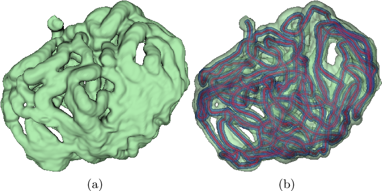 Figure 1 for Deep Small Bowel Segmentation with Cylindrical Topological Constraints