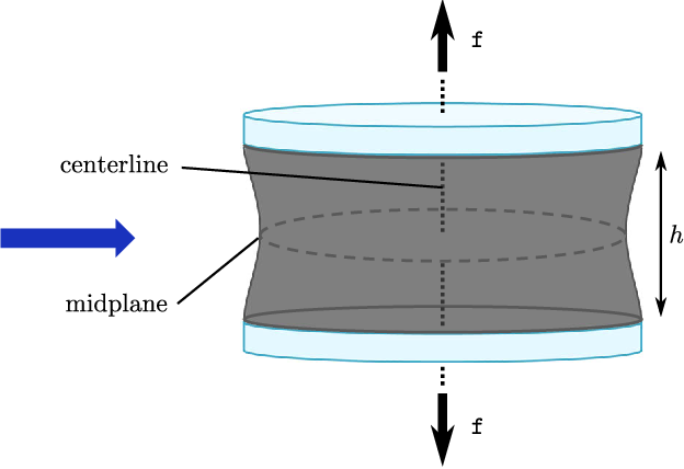 Fig. 1 Schematic of the poker-chip experimental setup of Gent and Lindley (1959). The initial radius of the rubber disks was fixed at R = 1 cm, while their initial thicknesses were varied from H = 0.056cm to H = 0.980cm in order to induce stress fieldswith awide range of triaxialities (from large for the thinnest disk to relatively small for the thickest one) inside the rubber