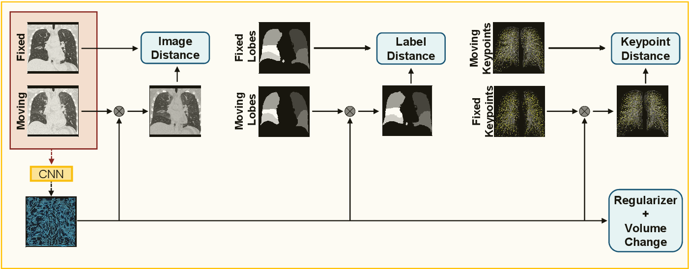 Figure 1 for Constraining Volume Change in Learned Image Registration for Lung CTs