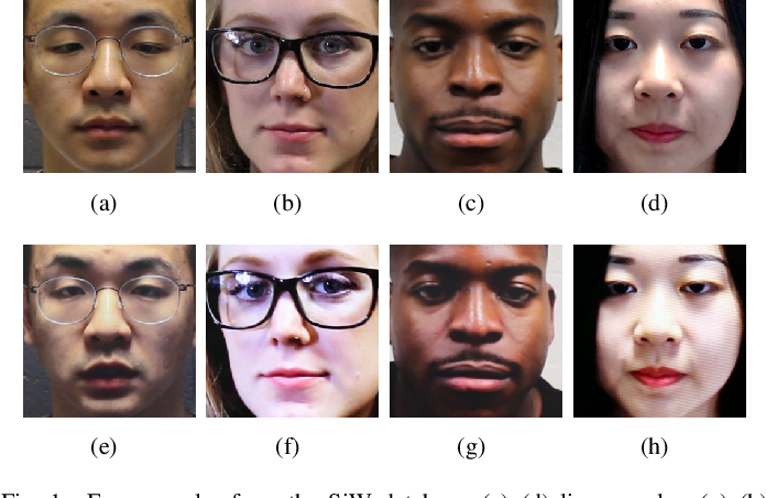 Figure 1 for Style Transfer Applied to Face Liveness Detection with User-Centered Models