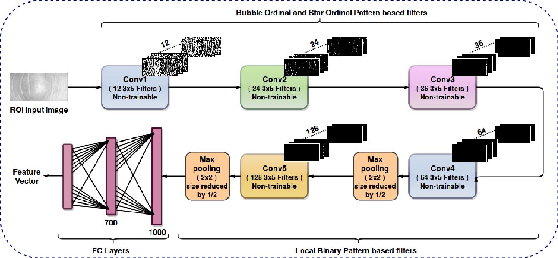 Figure 4 for FDFNet : A Secure Cancelable Deep Finger Dorsal Template Generation Network Secured via. Bio-Hashing