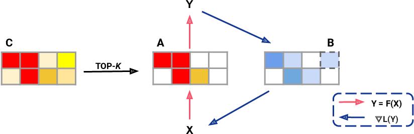 Figure 1 for Top-KAST: Top-K Always Sparse Training