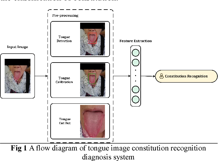 Figure 1 for Tongue image constitution recognition based on Complexity Perception method