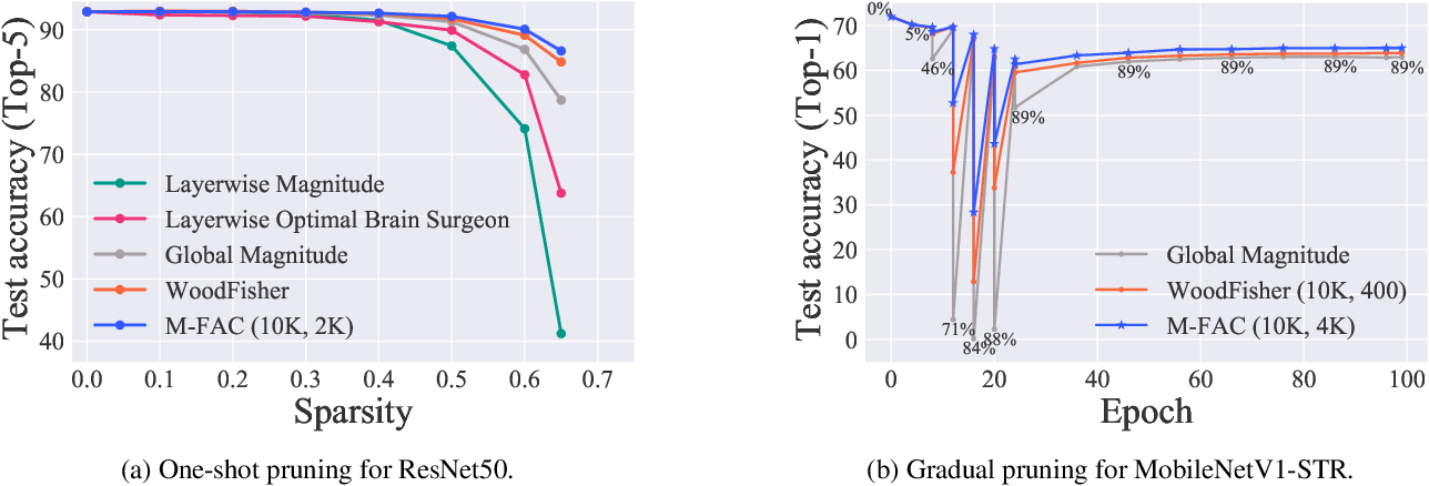 Figure 1 for Efficient Matrix-Free Approximations of Second-Order Information, with Applications to Pruning and Optimization