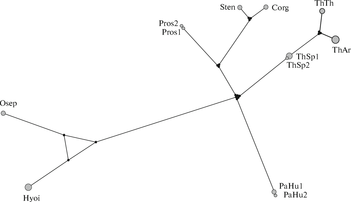 Figure 3 From Phylogeny Of Salmonoid Fishes Salmonoidei Based On