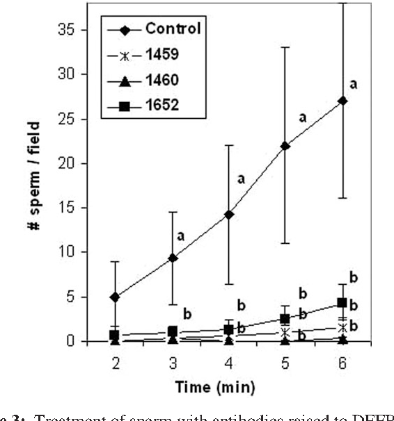 Figure 3: Treatment of sperm with antibodies raised to DEFB126 on intact  sperm inhibits CMP