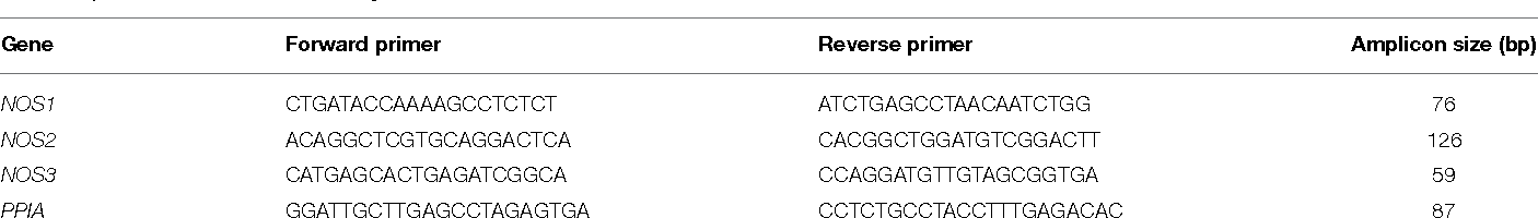 TABLE 1 | Primers used for PCR analysis.