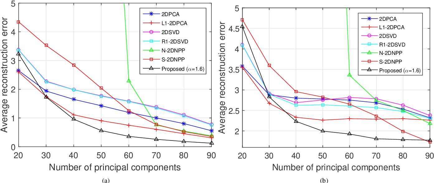 Figure 4 for Robust Tensor Decomposition for Image Representation Based on Generalized Correntropy