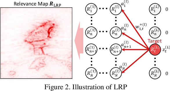 Figure 2 for Explaining Convolutional Neural Networks using Softmax Gradient Layer-wise Relevance Propagation