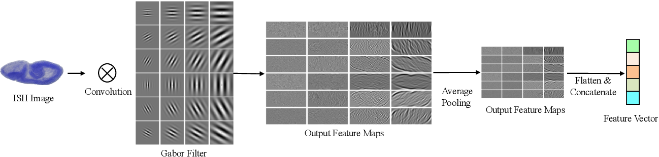 Figure 4 for Deep Low-Shot Learning for Biological Image Classification and Visualization from Limited Training Samples