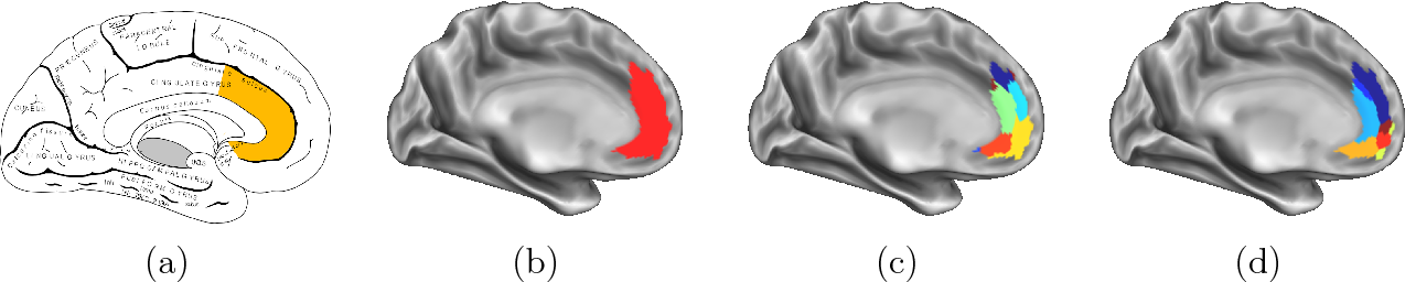 Figure 2 for Connectivity-Driven Parcellation Methods for the Human Cerebral Cortex
