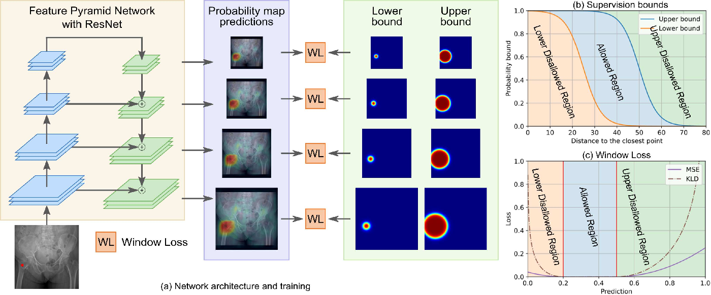 Figure 3 for A New Window Loss Function for Bone Fracture Detection and Localization in X-ray Images with Point-based Annotation