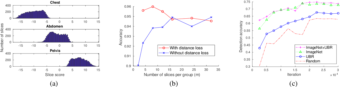 Figure 4 for Unsupervised Body Part Regression via Spatially Self-ordering Convolutional Neural Networks