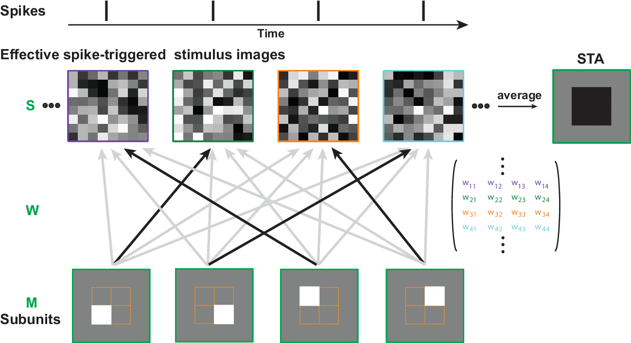 Figure 2 for Neural System Identification with Spike-triggered Non-negative Matrix Factorization