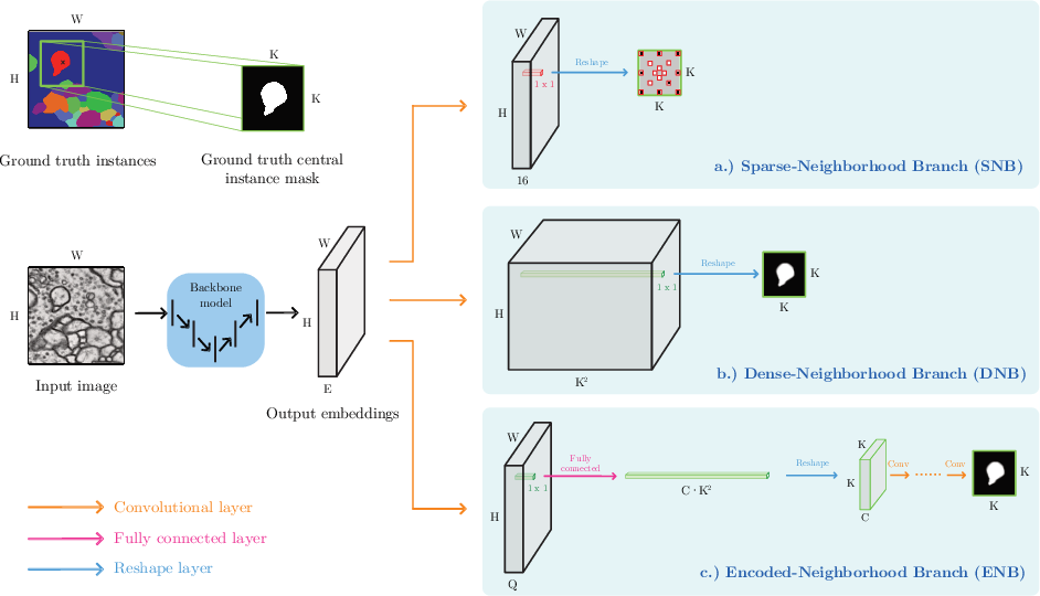 Figure 1 for Proposal-Free Volumetric Instance Segmentation from Latent Single-Instance Masks