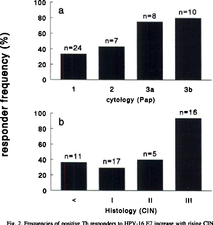 Fig. 2. Frequencies of positive Th responders to HPV-l6 E7 increase with rising CIN disease severity; cross-sectional analysis of CIN patients with current or past infections with HPV-16 or HPV-l6-related types (n 49) at the end of FU. The absolute number