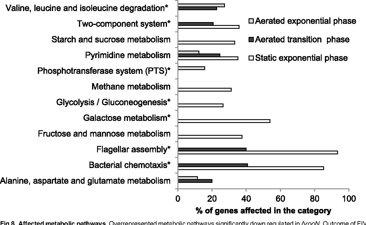 PDF] Bacillus cereus ATCC 14579 RpoN (Sigma 54) Is a