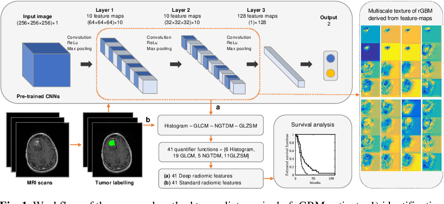 Figure 1 for Deep radiomic features from MRI scans predict survival outcome of recurrent glioblastoma