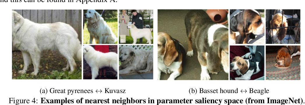 Figure 4 for Where do Models go Wrong? Parameter-Space Saliency Maps for Explainability