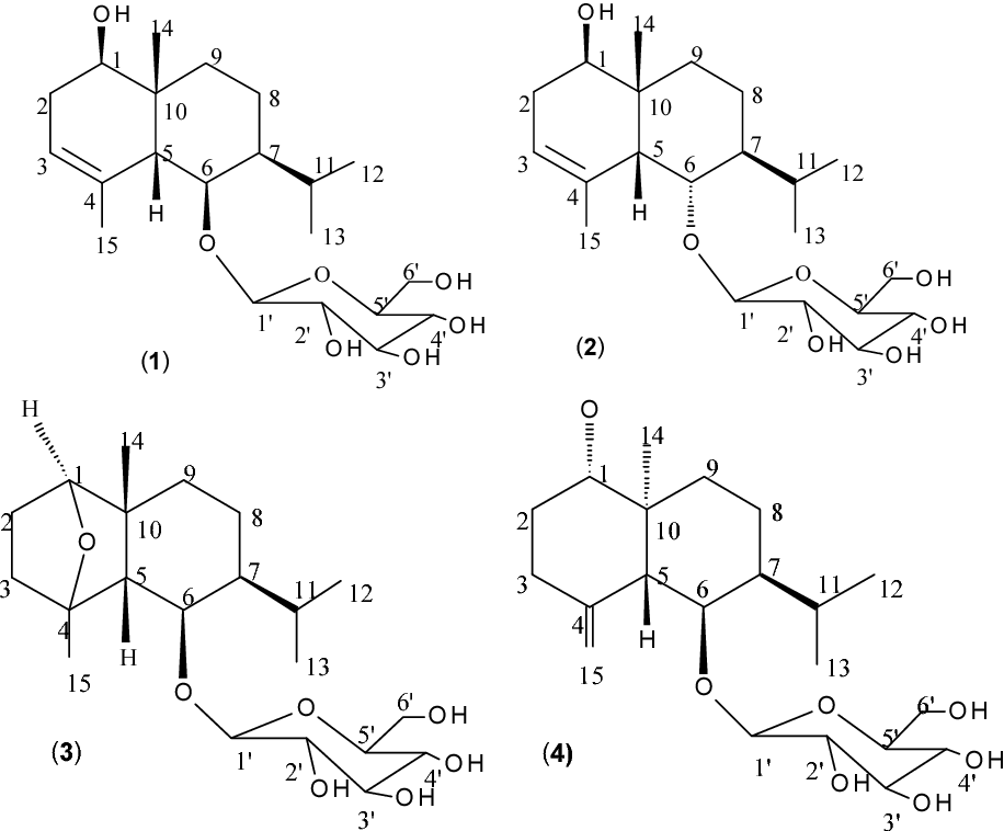 Figure 1 From A New Eudesmane Sesquiterpene Glucoside From Liriope