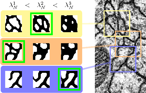 Figure 2 for Multi-Hypothesis CRF-Segmentation of Neural Tissue in Anisotropic EM Volumes