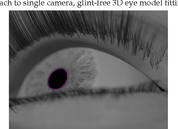 PDF] A fully-automatic , temporal approach to single camera , glint