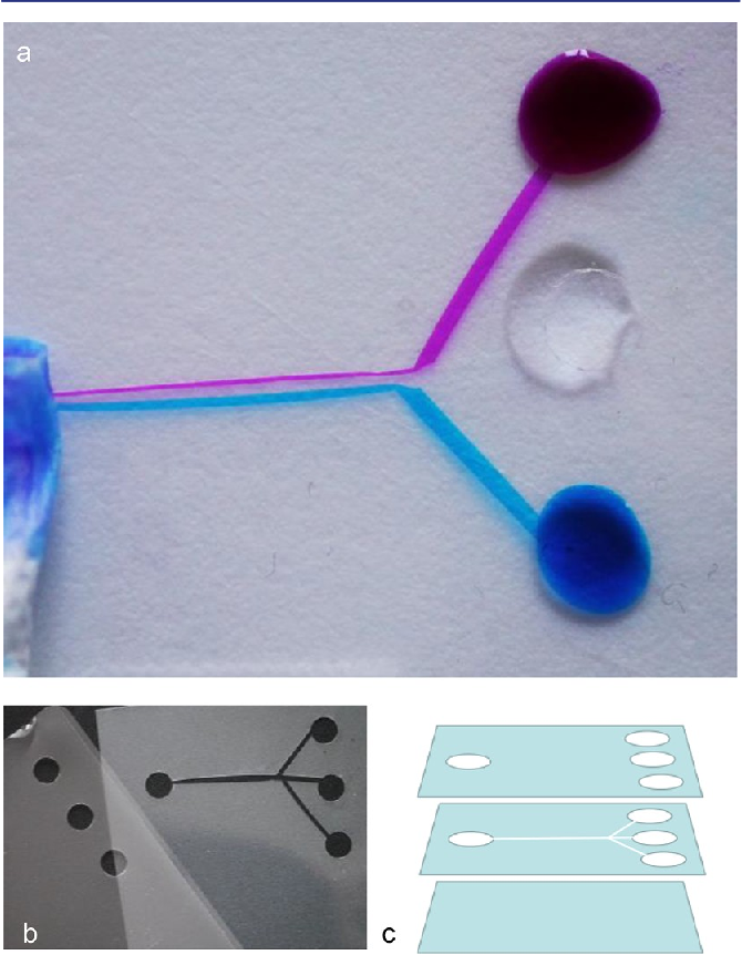 Figure 6 from Lab-on-a-Chip: Frontier Science in the