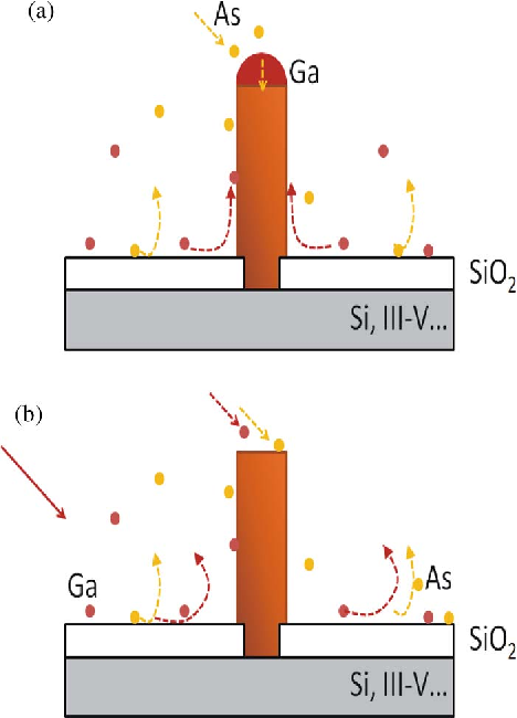 Fig. 2. Schematics of the growth methods: (a) gallium-assisted growth; and (b) SAE.