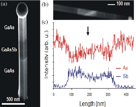 Fig. 8. (a) SEM of a GaAs nanowire incorporating a GaAsSb segment and (b) HAADF-STEM measurement of a GaAs wire with a (top) 270-nm-long GaAsSb segment, EDS linescan of the wire (courtesy of P. Caroff) [40].