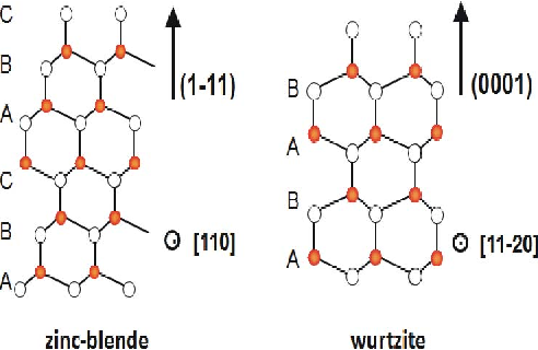 Fig. 9. Schematic drawing of the crystalline structure of zinc blende along the (1 1 1)B direction and of wurtzite along the (0 0 0 1) direction.
