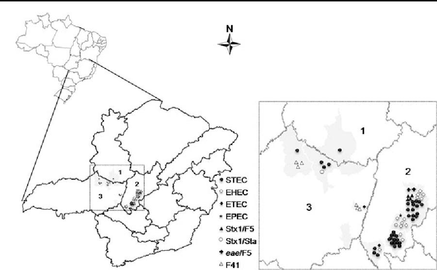 Identification Of Virulence Factors By Multiplex Pcr In Escherichia