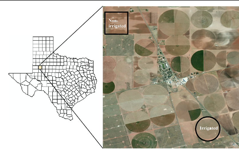 Fig. 1 Map of Texas showing Dawson County with an aerial photo insert of the study location in Welch, Texas, USA (study fields are within the black borders)