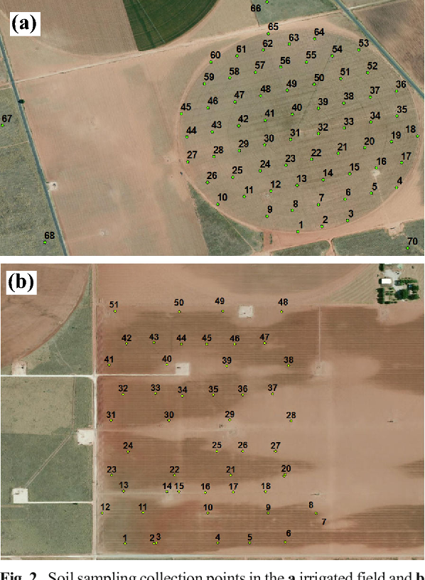Fig. 2 Soil sampling collection points in the a irrigated field and b non-irrigated field in Welch, Texas, USA