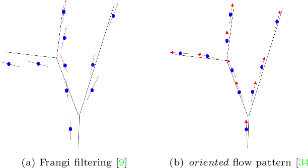 Figure 2 for Confluent Vessel Trees with Accurate Bifurcations