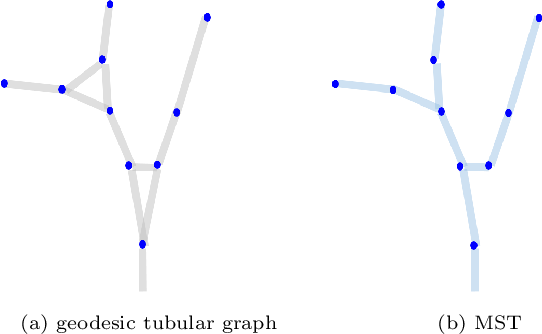 Figure 3 for Confluent Vessel Trees with Accurate Bifurcations