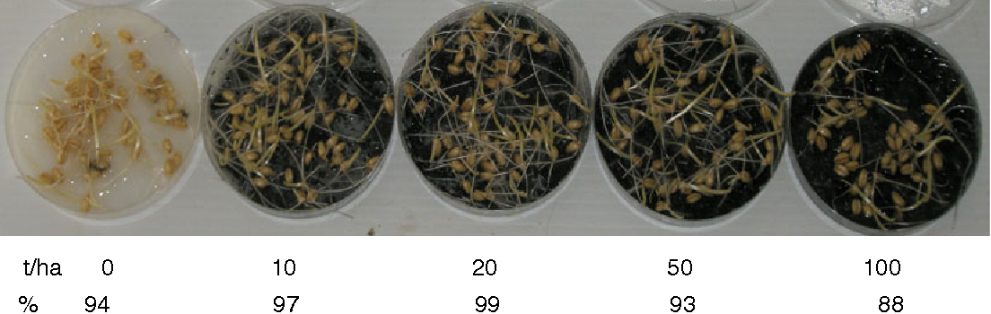 Fig. 1 Photograph of effect of biochar (new jarrah, NJ) at different rates 0, 0.5, 1.0, 2.5, 5.0 g/Petri dish (equivalent to 0, 10, 20, 50, 100 t/ha based on 10 cm field depth) on seed germination (%) of wheat conducted in the soil-less Petri dish bioassay (Experiment 1)