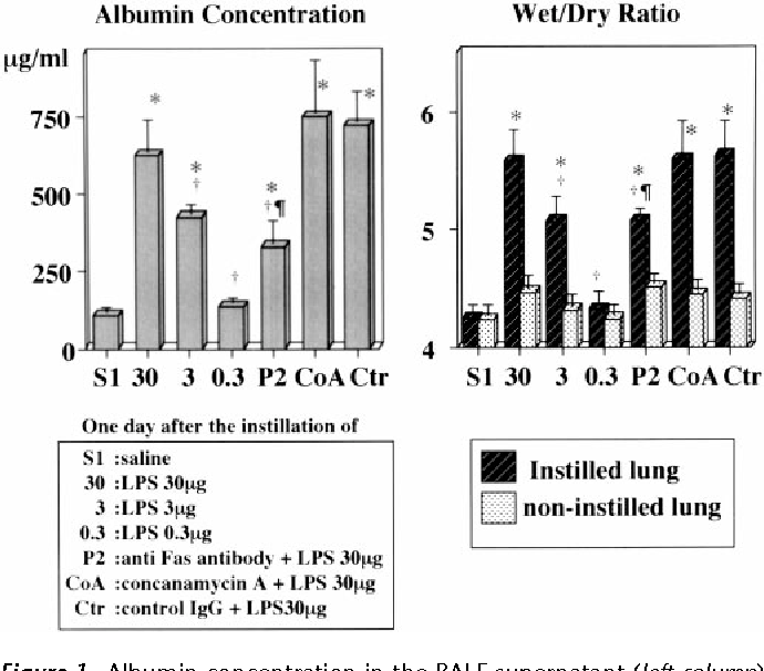 Figure 1. Albumin concentration in the BALF supernatant (left column) and wet/dry ratio of the instilled lung and noninstilled lung (right column) 1 d after the various interventions. Data shown as mean 1 SEM. n 5 10 in each group (total 140 mice). Albumin concentration and wet/dry ratio were studied using separate mice. *p , 0.05 versus negative control (0.9% NaCl instillation depicted as saline in the figure); †p , 0.05 versus positive control (30 mg LPS instillation); ¶p , 0.05 versus control IgG 1 30 mg LPS.