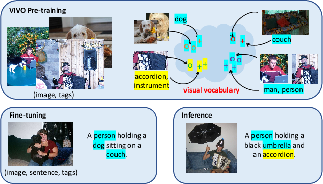 Figure 1 for VIVO: Surpassing Human Performance in Novel Object Captioning with Visual Vocabulary Pre-Training
